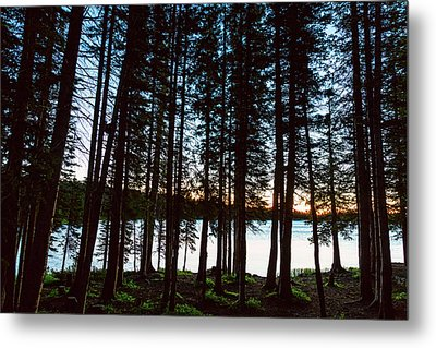 Metal Print featuring the photograph Mountain Forest Lake by James BO Insogna