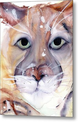 Metal Print featuring the painting Mountain Lion by Dawn Derman