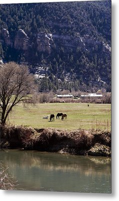 Metal Print featuring the photograph Mountain Pasture Vertical by Lorraine Devon Wilke