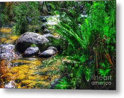 Mountain Stream Metal Print by Blair Stuart