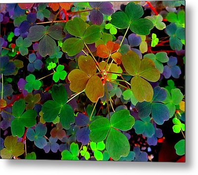 Multi-coloured Leaves Metal Print