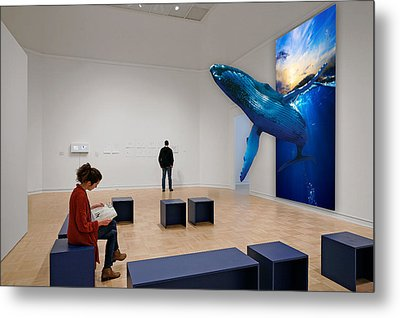 Museum Whale Watching Metal Print by Marvin Blaine