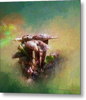 Mushroom Patch Metal Print by Marvin Spates