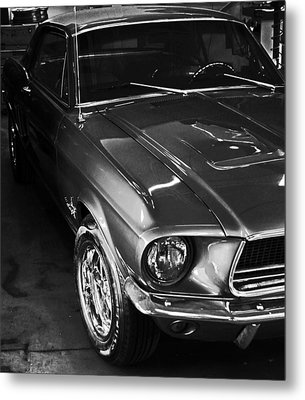 Mustang In Black And White Metal Print