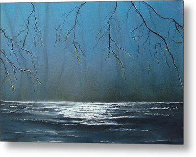 Mysterious Water Metal Print by Veronique Radelet