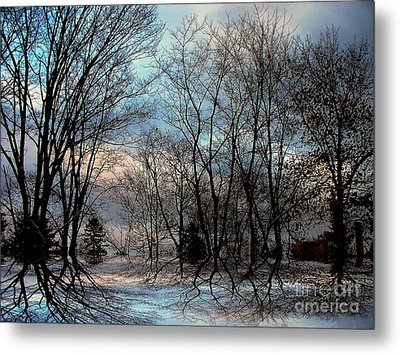 Mystical Metal Print by Elfriede Fulda