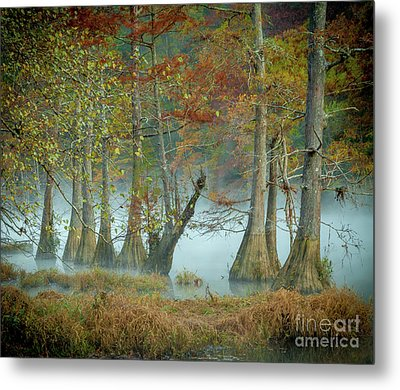 Metal Print featuring the photograph Mystical Mist by Iris Greenwell
