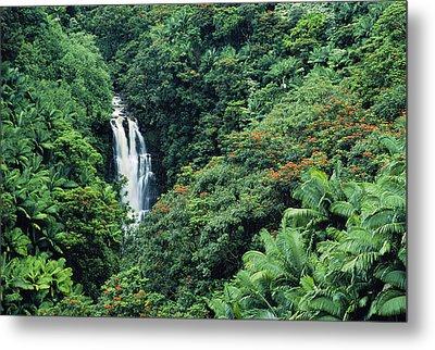 Nanue Falls Hawaii Metal Print by Greg Vaughn