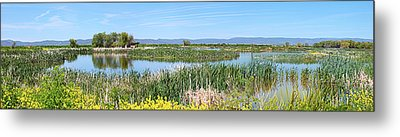 National Wildlife Preserve Marshes In Klamath Falls Oregon. Metal Print by Gino Rigucci