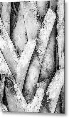 Metal Print featuring the photograph Natures Abstract Black And White by Julie Palencia