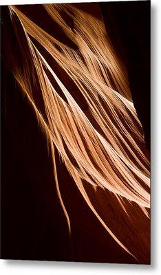 Natures Lines Metal Print by Adam Romanowicz