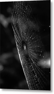 Nature's Masterpiece Metal Print by Off The Beaten Path Photography - Andrew Alexander