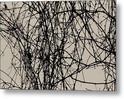 Nature's Pen And Ink 2 Metal Print