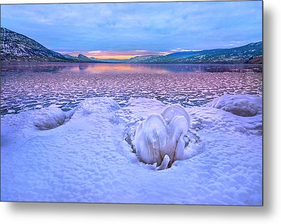 Metal Print featuring the photograph Nature's Sculpture by John Poon