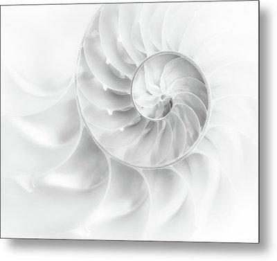 Nautilus Shell In High Key Metal Print by Tom Mc Nemar