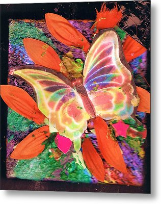 Neon Lights Butterfly On Boxed Canvas Metal Print by Anne-Elizabeth Whiteway