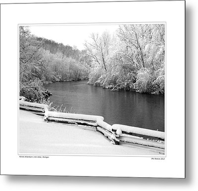 Nichols Arboretum #5 Metal Print by Phil Perkins