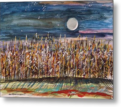 Night In The Cornfield Metal Print by John Williams