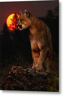 Night Of The Cougar Metal Print by Wade Aiken