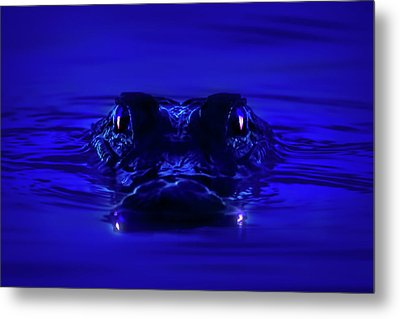 Night Watcher Metal Print