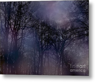 Nightfall In The Woods Metal Print by Sandy Moulder