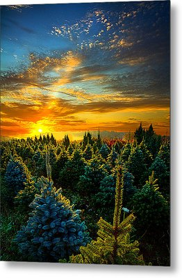 Not Forgotten Metal Print by Phil Koch