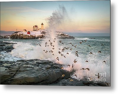 Nubble Wave With Sandpipers Metal Print by Benjamin Williamson