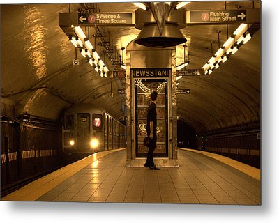 Metal Print featuring the photograph Ny Br.73 by Ljubisa Milisavljevic