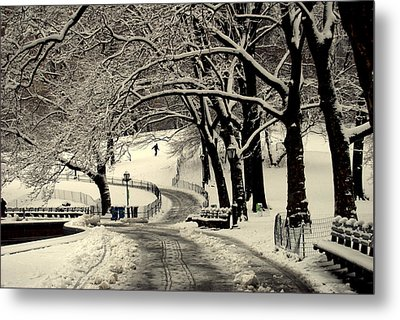 Metal Print featuring the photograph Ny Br.78 by Ljubisa Milisavljevic