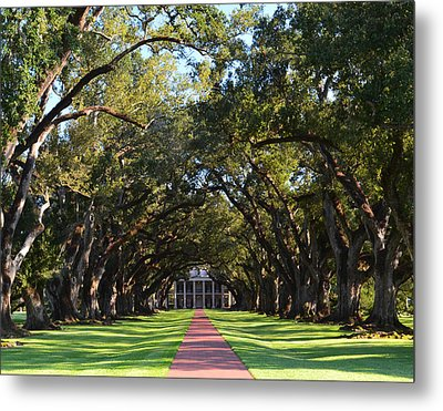 Oak Alley Plantation Metal Print by Maggy Marsh