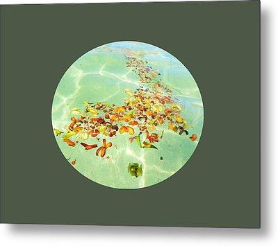 Ocean Flowers Oval Metal Print by Linda Hollis