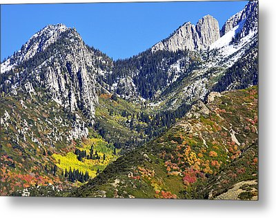 October Autumn  Metal Print
