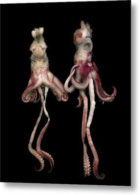 Octopus Metal Print by Photograph by Magda Indigo