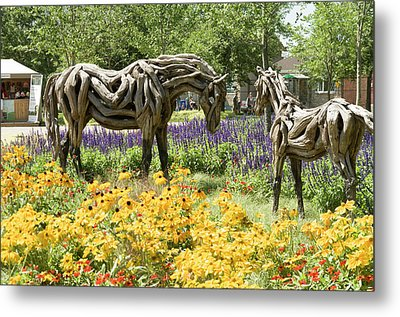 Odyssey The Horse And Hope The Colt Sculptures Made Of Driftwood Metal Print