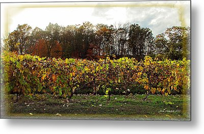 Metal Print featuring the photograph Ohio Winery In Autumn by Joan  Minchak
