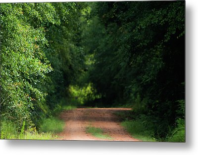 Metal Print featuring the photograph Old Dirt Road by Shelby Young