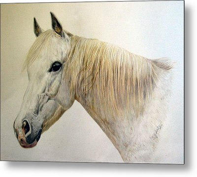 Old Grey Metal Print by Sue Ireland