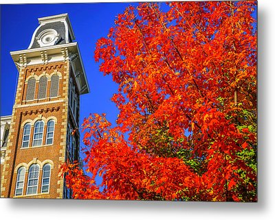 Old Main Maple Metal Print by Damon Shaw