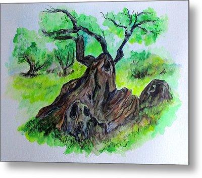 Olive Tree Metal Print by Clyde J Kell