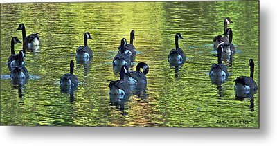On Golden Pond Metal Print by DigiArt Diaries by Vicky B Fuller