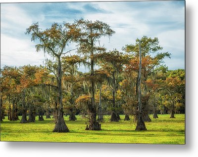 On Green Bayou Metal Print