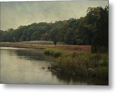 Metal Print featuring the photograph On The Brink Of Winter by Rosemary Aubut