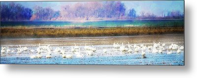 On The Delta Panorama Metal Print