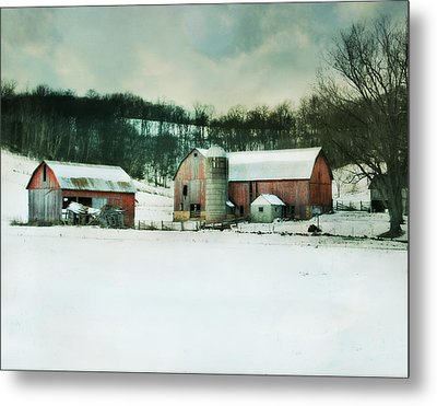 Once Was Special Metal Print by Julie Hamilton