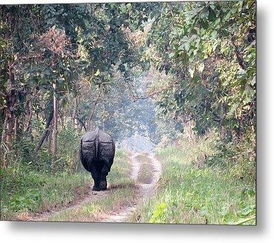 One Horned Rhino Walking Down The Road Metal Print by Clinton Weaver