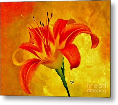 Metal Print featuring the photograph One Tigerlily by Marsha Heiken