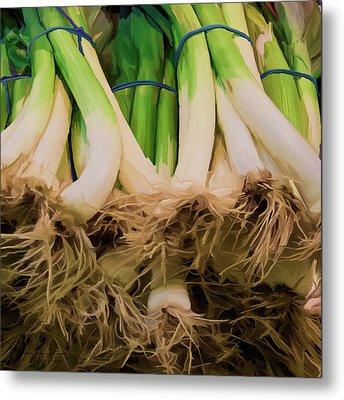 Onions 02 Metal Print by Wally Hampton