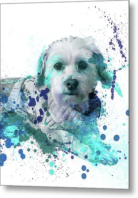 Only For Arlene 1 Metal Print by Delphimages Photo Creations