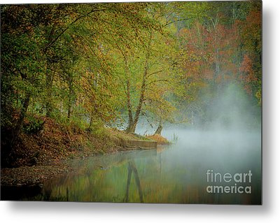 Metal Print featuring the photograph Only If I Go by Iris Greenwell