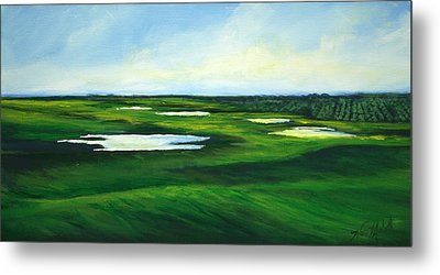 Orange County Fairway Metal Print by Michele Hollister - for Nancy Asbell